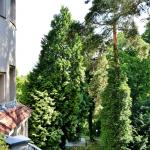 Эксклюзивная вилла в районе Грюневальд, Берлин 1-15